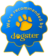 dogster_recommended_lg