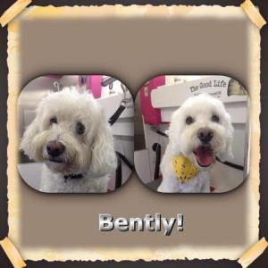 Bently